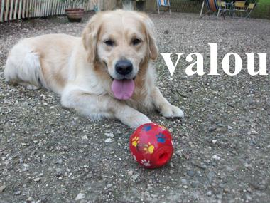 Valou