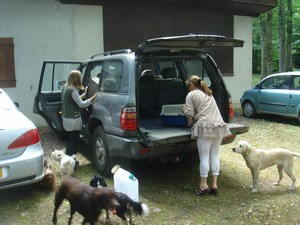 mini-chien-9-aout-2010-058